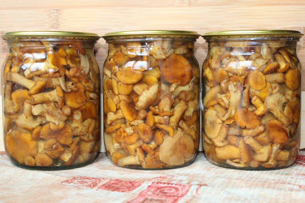 Жареные лисички на зиму: рецепты приготовления без стерилизации, в банках, пакете, фото