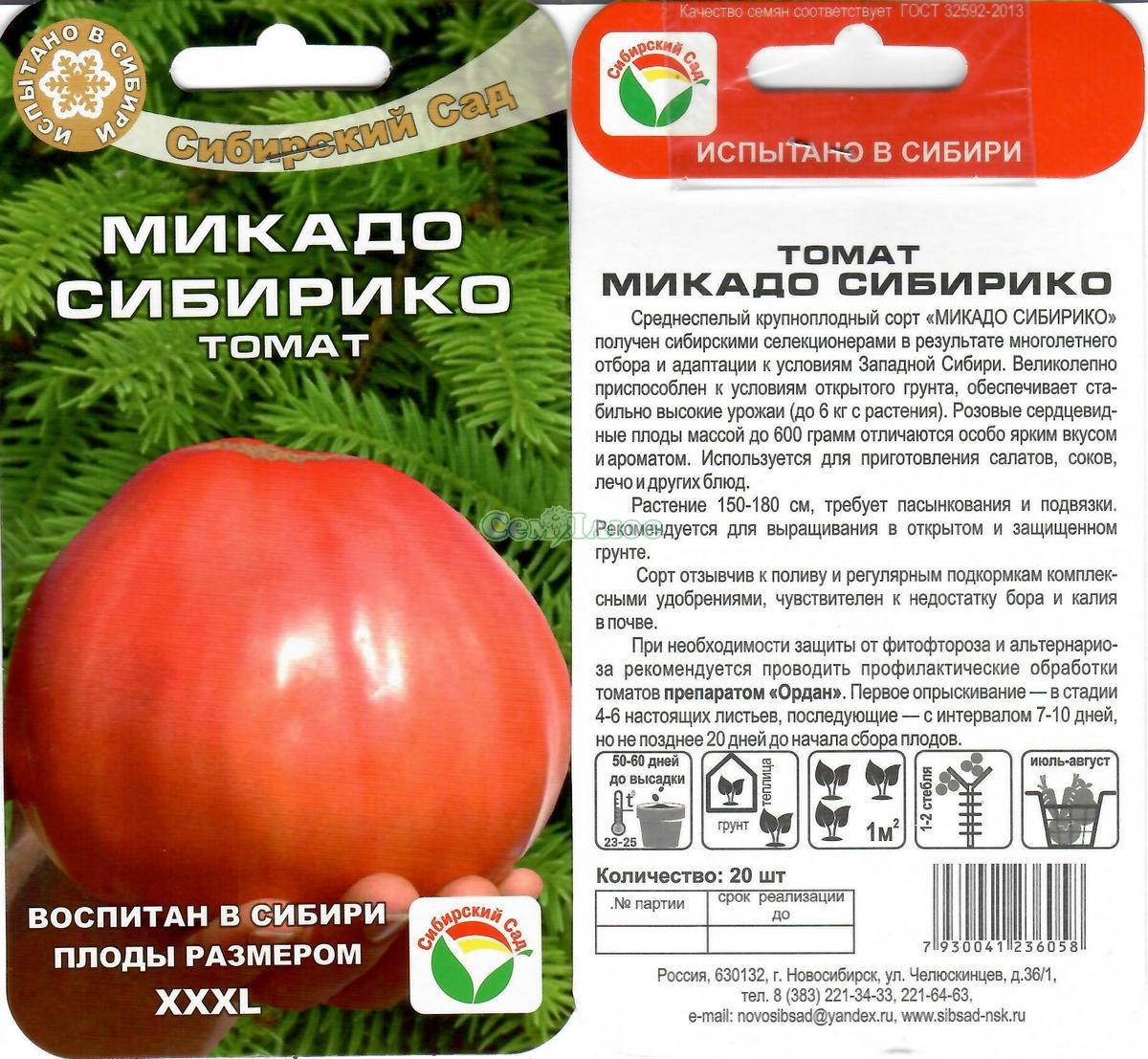 Помидор пиноккио: описание и характеристика сорта, особенности выращивания, ухода за томатами, отзывы, фото
