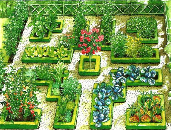 Детский огород на даче: обустройство и выбор растений