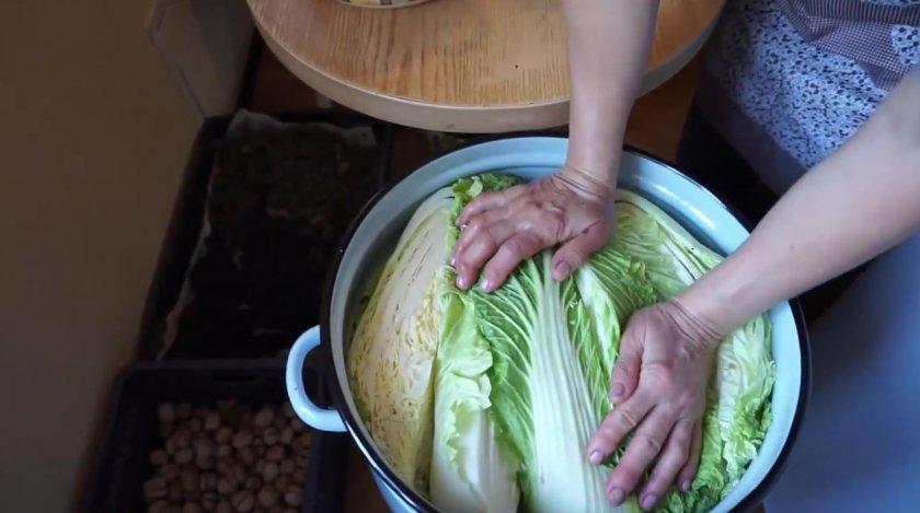 Как сохранить пекинскую капусту на зиму в домашних условиях. pravilnohranuedy.ru