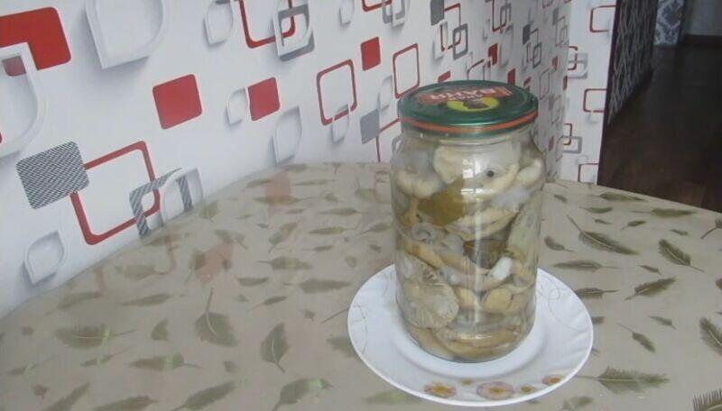 Можно ли замораживать соленые грибы