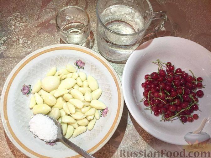 Маринованный чеснок с крыжовником: рецепты приготовления на зиму с фото и видео