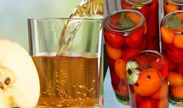 Почему мутнеет рассол в маринованных огурцах и помидорах