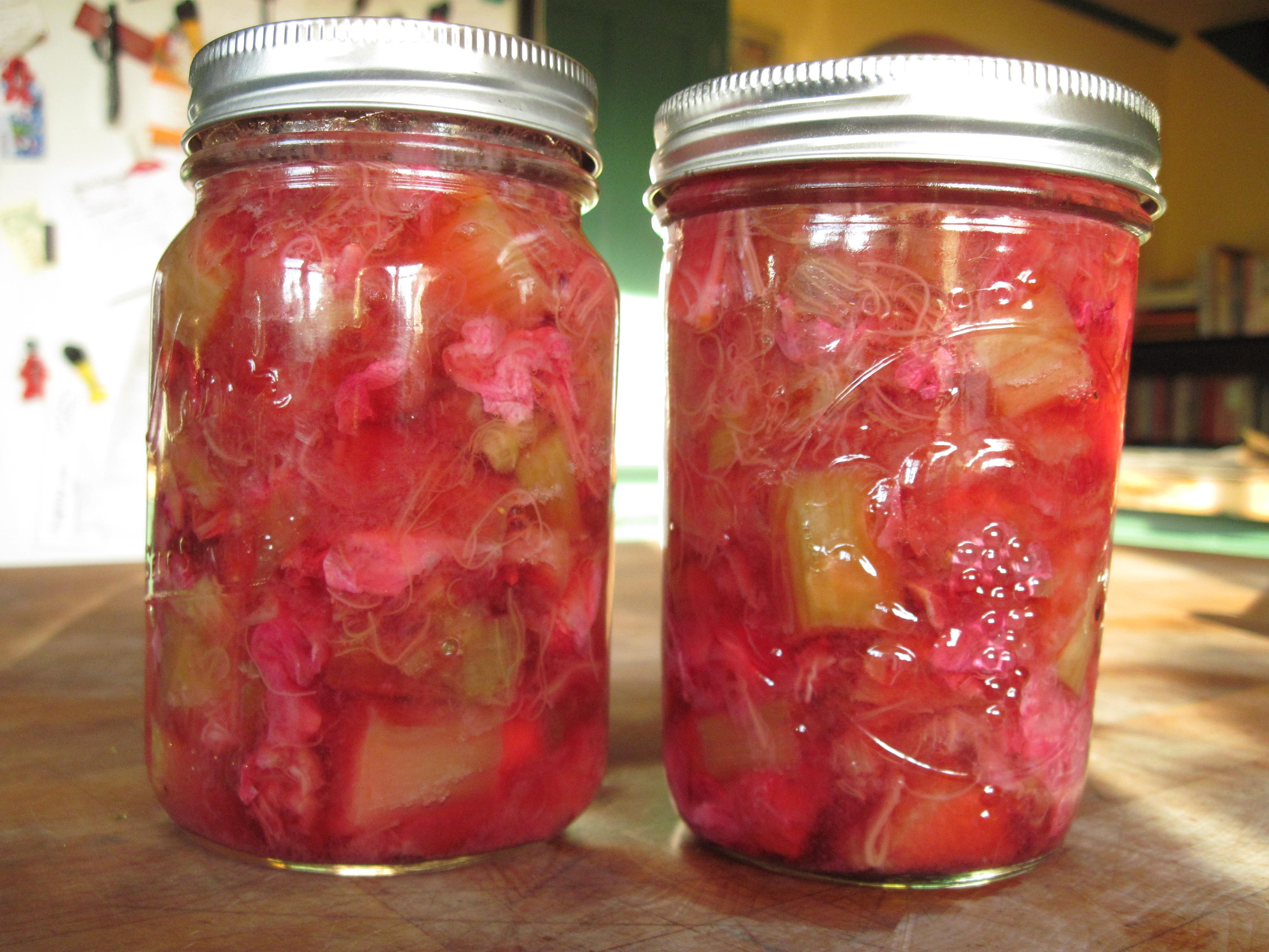 20 лучших рецептов приготовления заготовок из ревеня на зиму