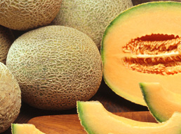 Главные особенности сортов дыни с оранжевой мякотью