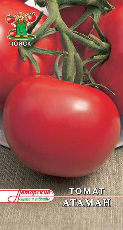 Томат боец - описание сорта, характеристика, урожайность, отзывы, фото