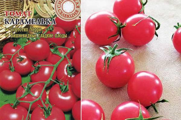 """Томаты """"карамель красная"""" f1: уникальное описание сорта помидор, урожайность, борьба с вредителями и плюсы выращивания русский фермер"""