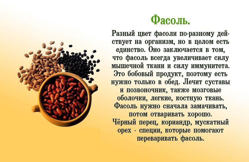 Фасоль красная для здоровья: состав, калорийность и пищевая ценность, польза и вред, применение и противопоказания