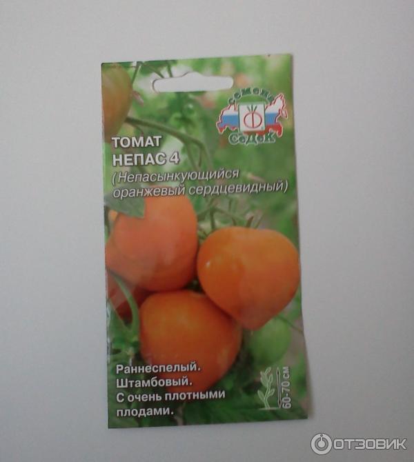 Томат немецкая красная клубника (розовая, оранжевая): отзывы огородников и их практические советы по выращиванию помидоров