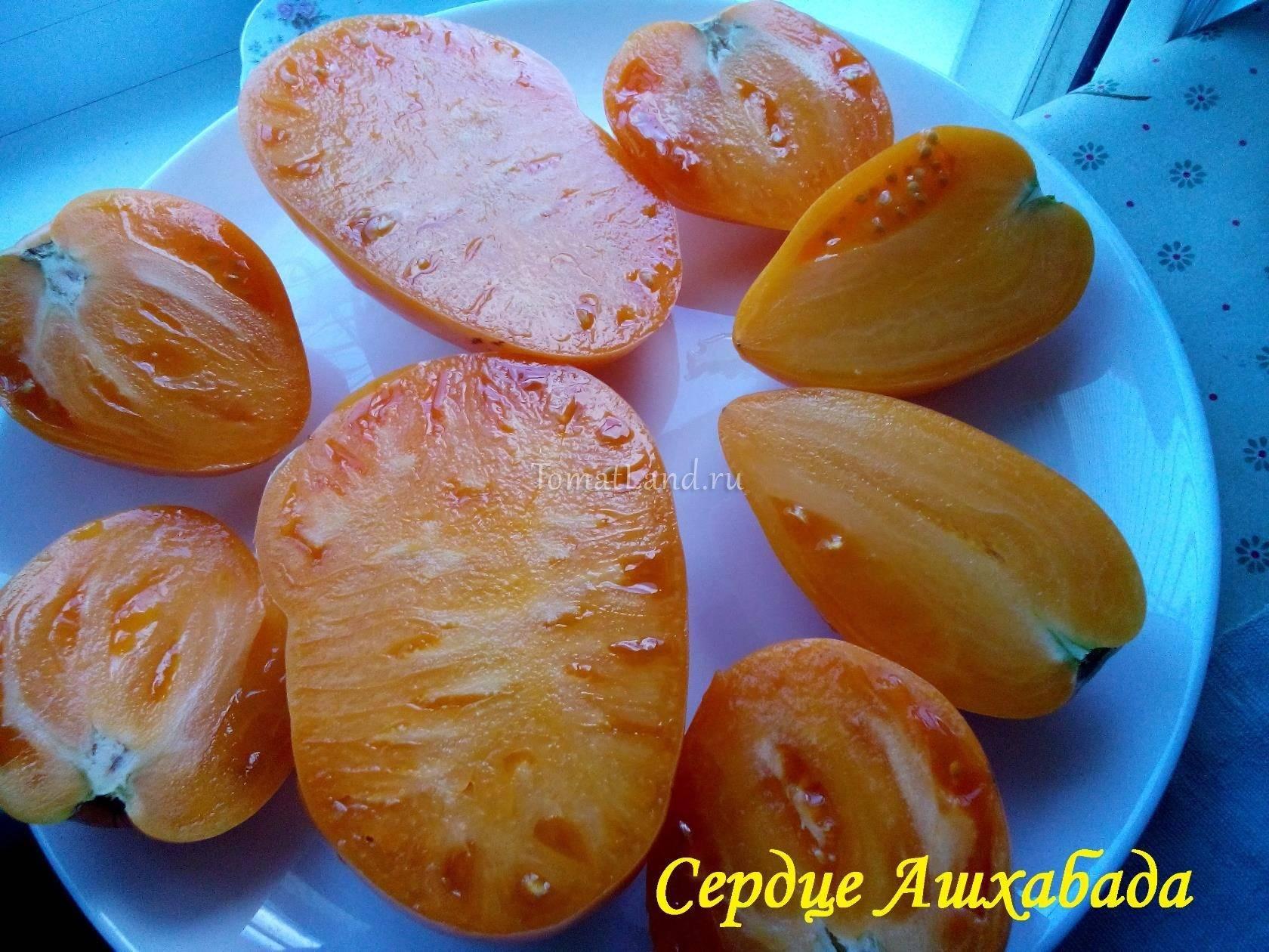 Томат «сердце ашхабада»: описание сорта, характеристики плодов-помидор, рекомендации по уходу и выращиванию