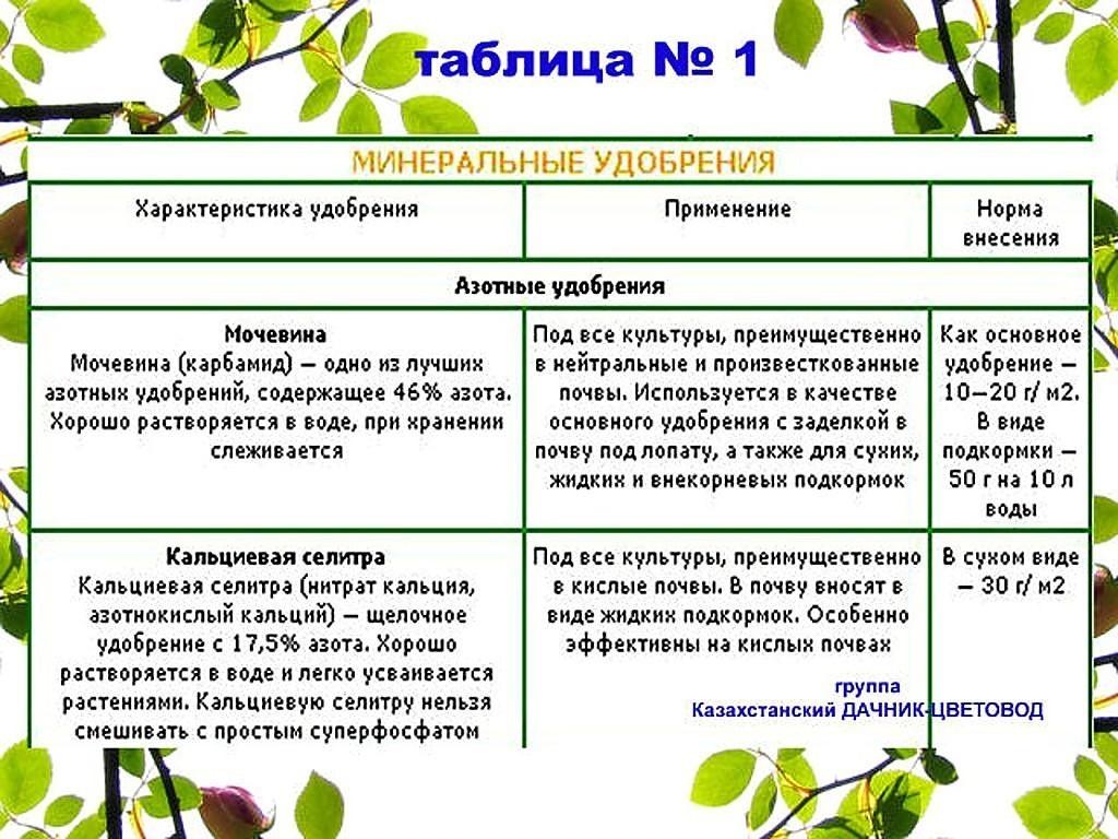Правила сбора и хранения дачного урожая