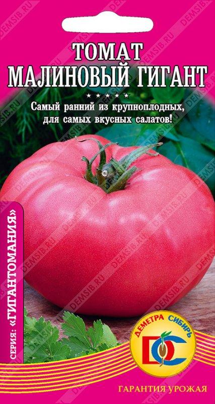 Томат ожаровский малиновый - вырастить просто: описание сорта, рекомендации по выращиванию русский фермер