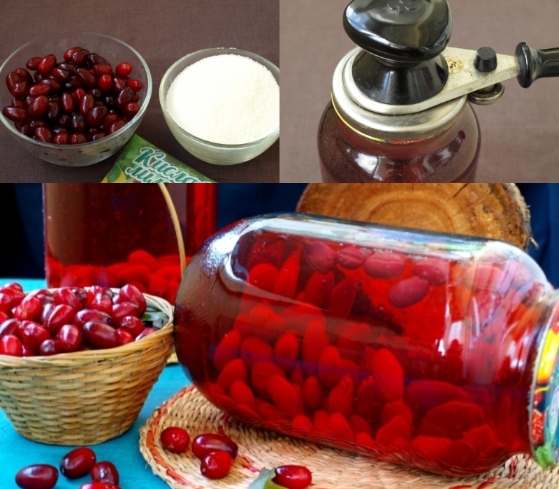 Варенье из кизила на зиму - пальчики оближешь! рецепты необычайно красивого и очень вкусного варенья