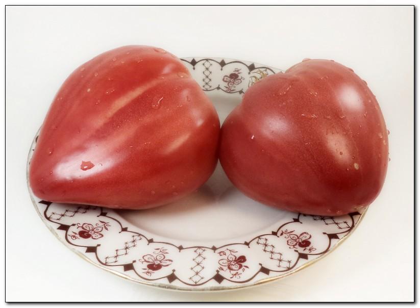 Коллекционер сортов томатов и перцев валентина редько