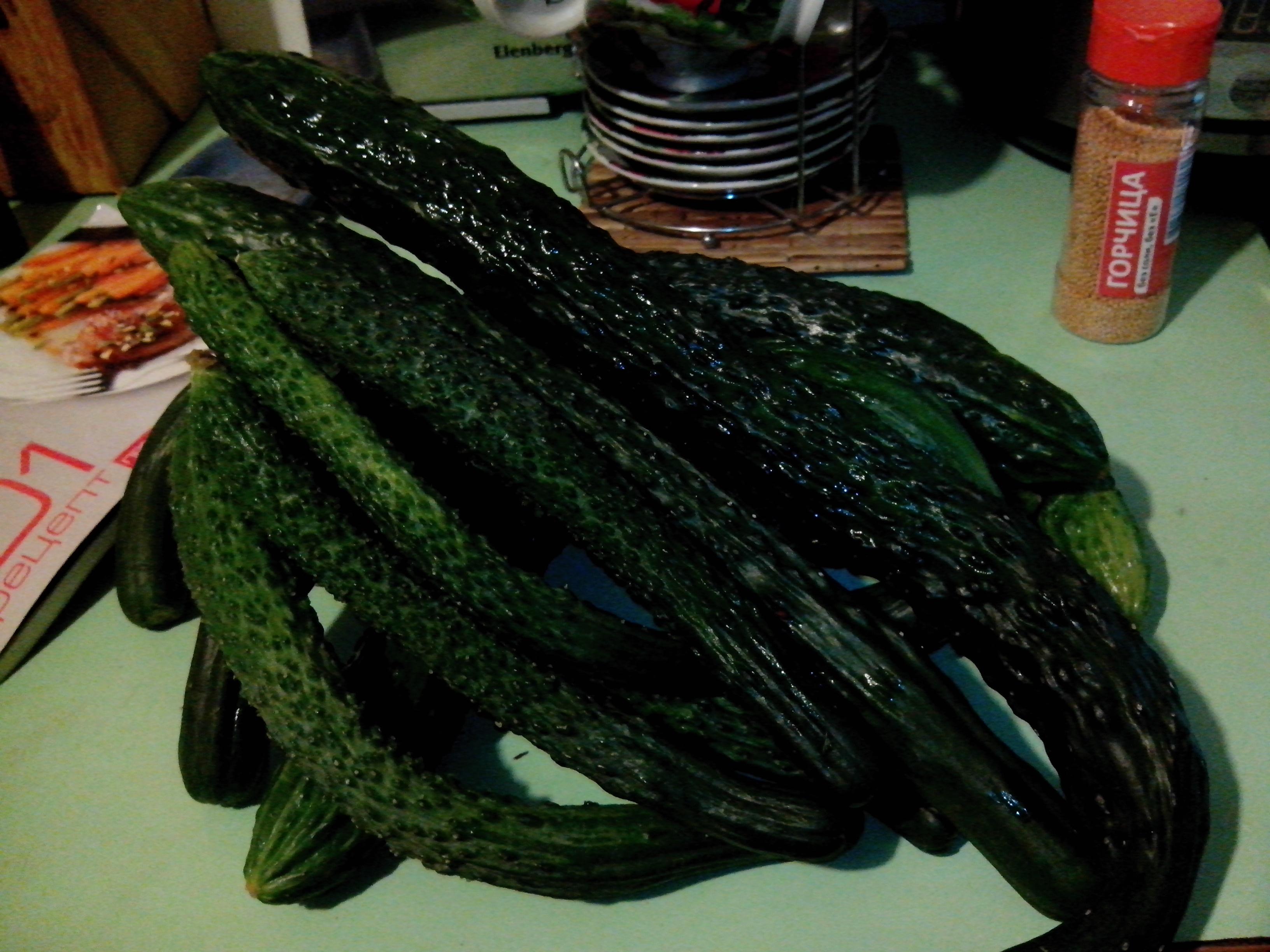 Огурцы изумрудный поток – описание сорта с фото, выращивание, отзывы о семенах, урожае