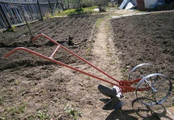 Как быстро прополоть картошку: инструменты, приспособления, инструкция, насадка на триммер