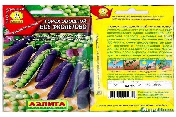 Фиолетовый горох: описание и особенности сортов, выращивание и урожайность с фото