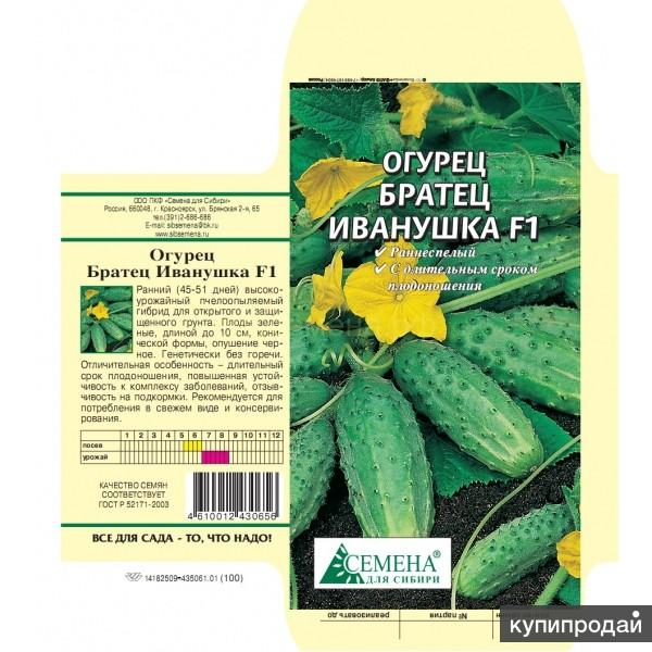 Огурец гирлянда f1: характеристика, правила выращивания, советы садоводов
