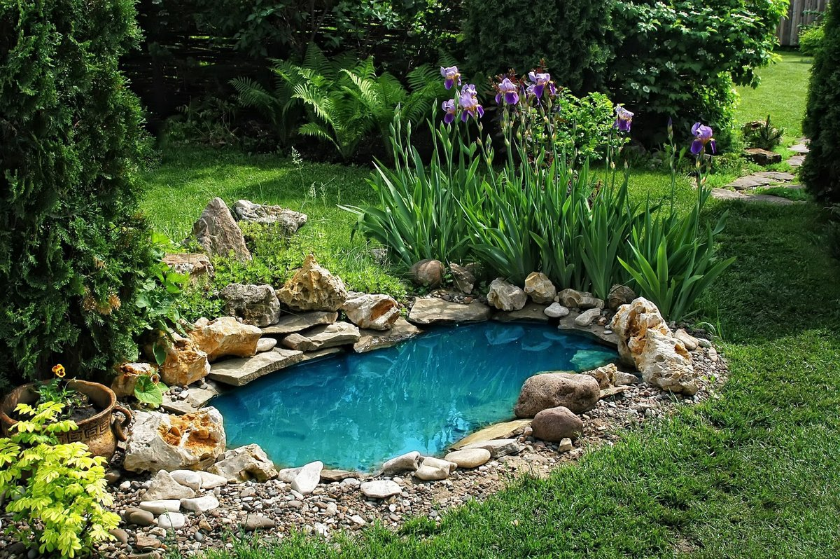 Этапы создания водоема из старой ванны на даче и способы его оформления. фото