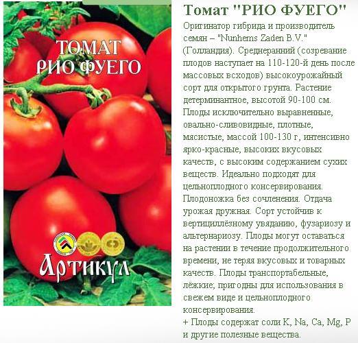 Лучшие сорта помидор для посадки в открытый грунт: особенности выращивания и ухода