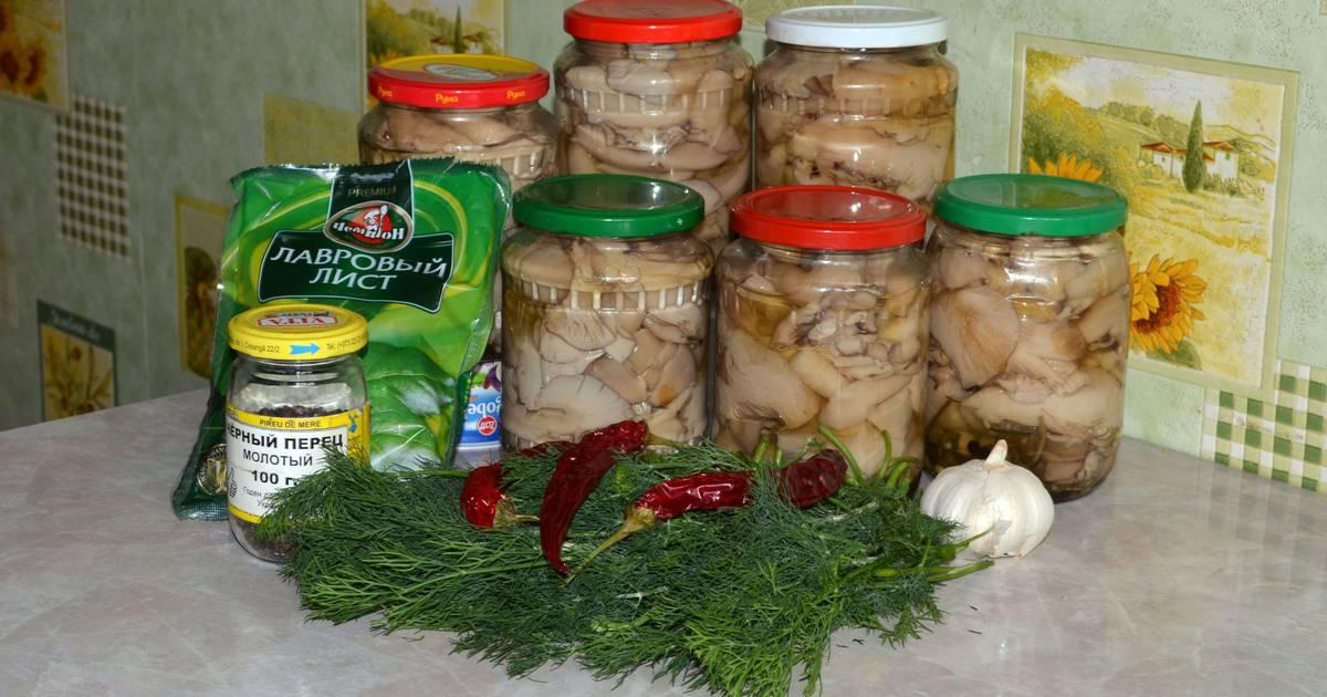 Как солить грибы вешенки на зиму в домашних условиях (+18 фото)