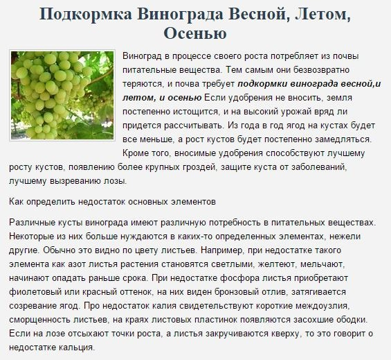 Признаки хлороза винограда и его виды, фото и способы лечения заболевания