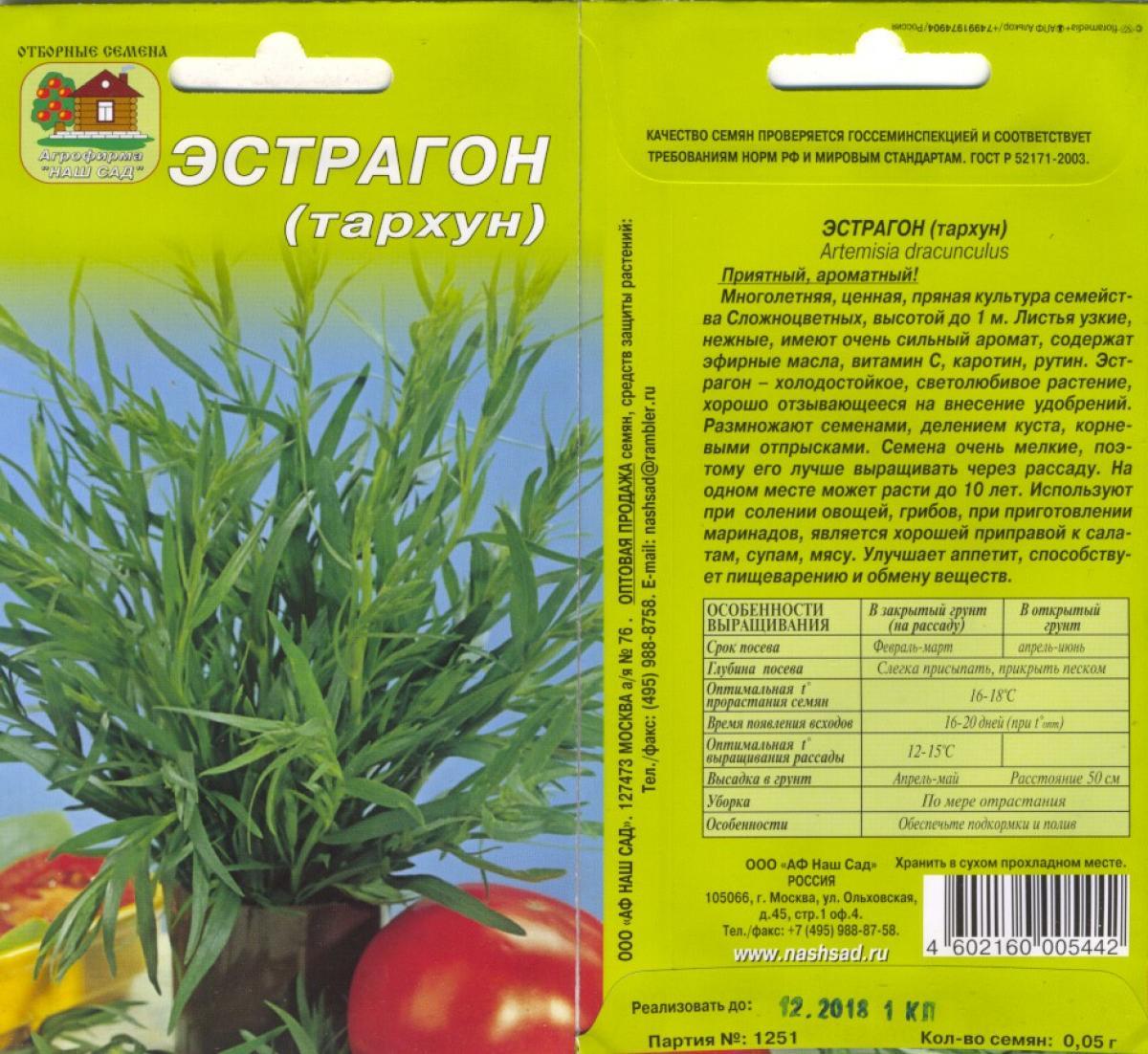 Тархун (эстрагон): описание растения, применение травы, выращивание из семян, посадка и уход, фото