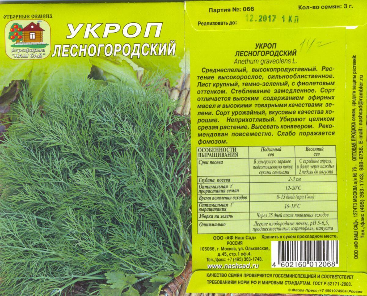 Описание сорта укропа дилл, рекомендации по выращиванию и уходу