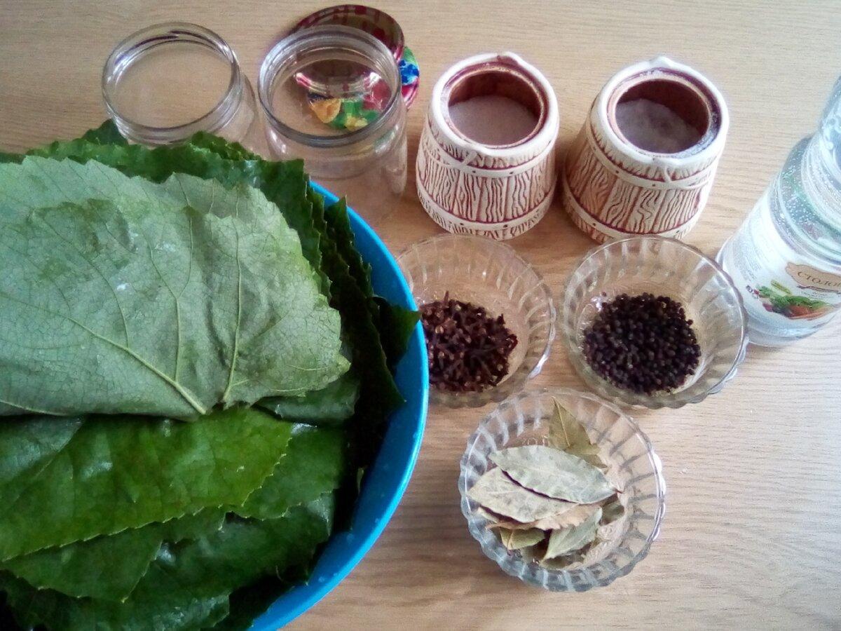 Как заготовить виноградные листья на зиму для долмы