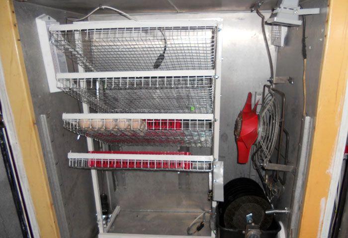 Инкубатор с автоматическим переворотом яиц: описание механизма + обзор самоделок