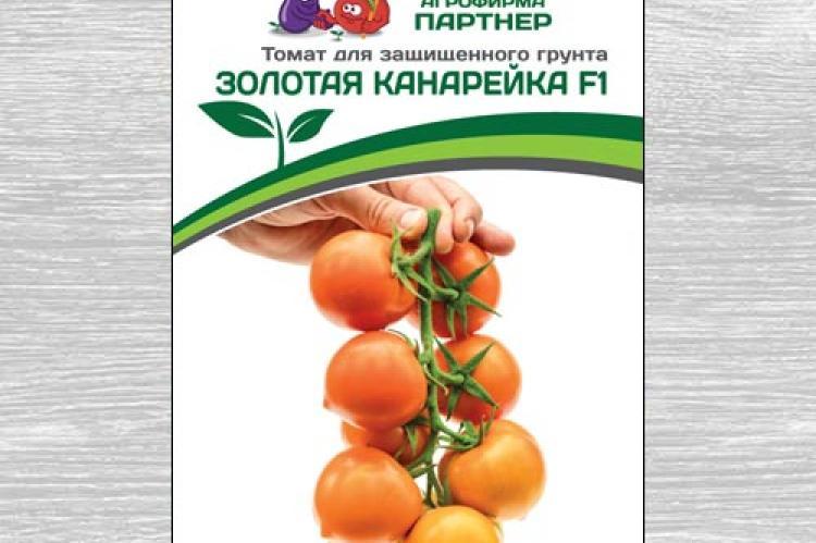 Характеристика и описание томата «золотая канарейка»