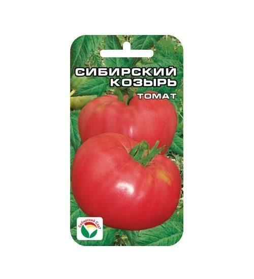 Лучшие сорта томатов сибирской селекции для теплиц, для открытого грунта с фото и описанием