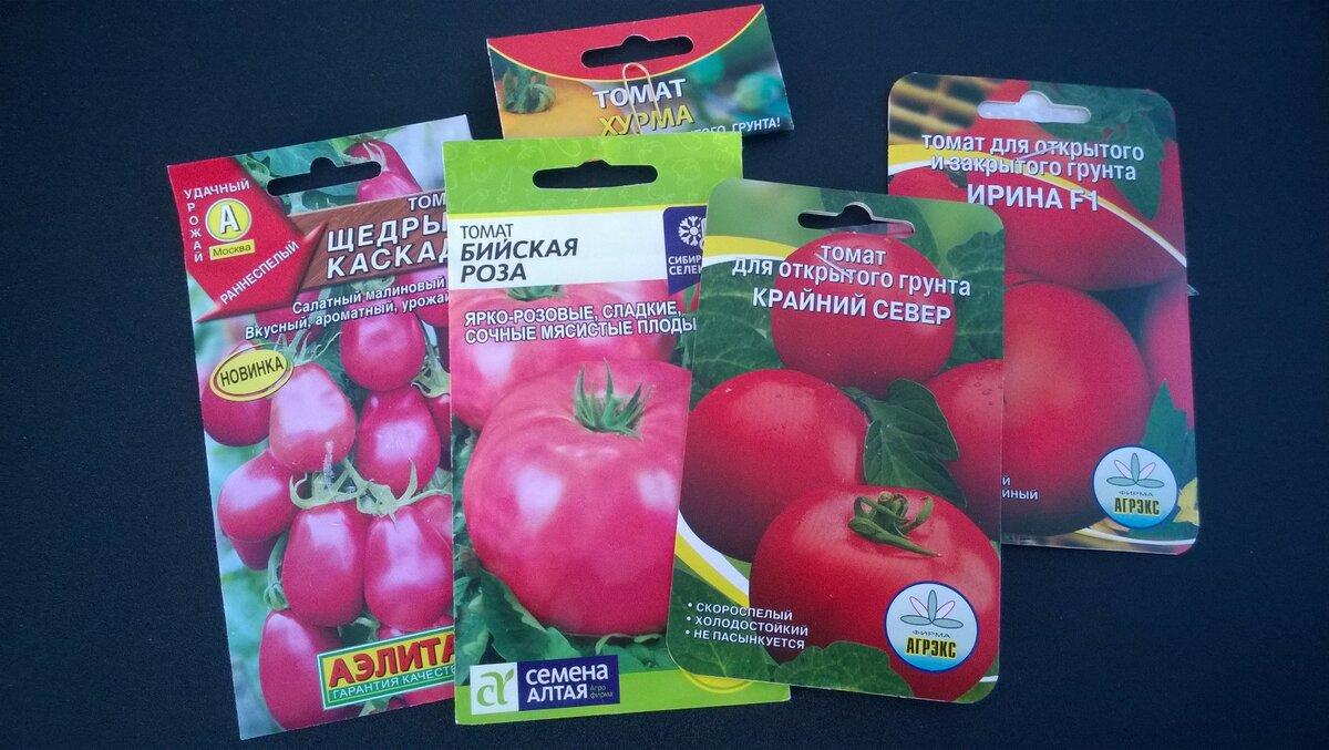 Характеристика и описание сорта томатов бийская роза и бийский розан – дачные дела