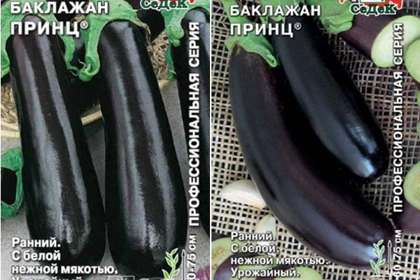 ✅ о баклажане черный красавец: описание и характеристики сорта, посадка, уход - tehnomir32.ru