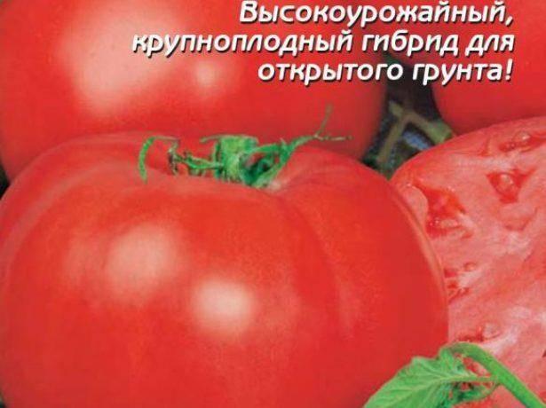 Томат султан: описание сорта, фото, отзывы, урожайность