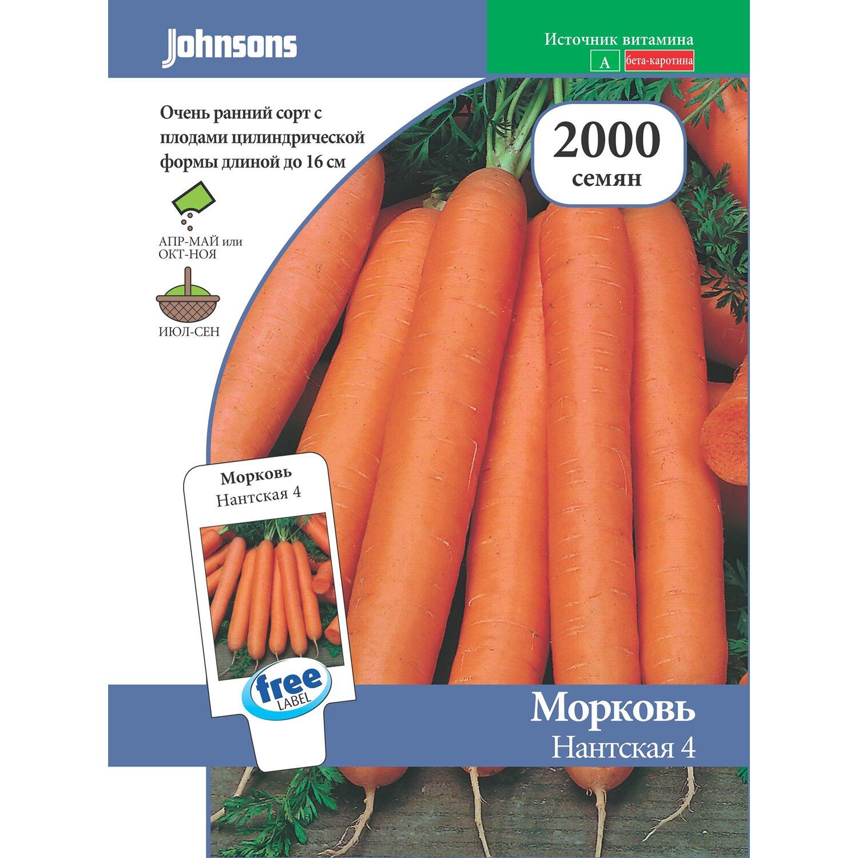 Морковь нантская 4: характеристика и описание сорта, отзывы, как выращивать