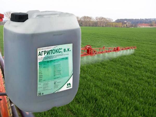 Обзор и описание топ-8 гербицидов для защиты подсолнечника, какой выбрать