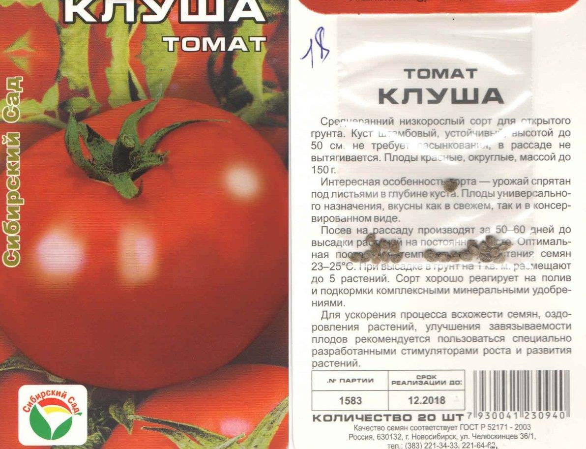 «шоколадные» томаты: особенности выращивания и характеристики