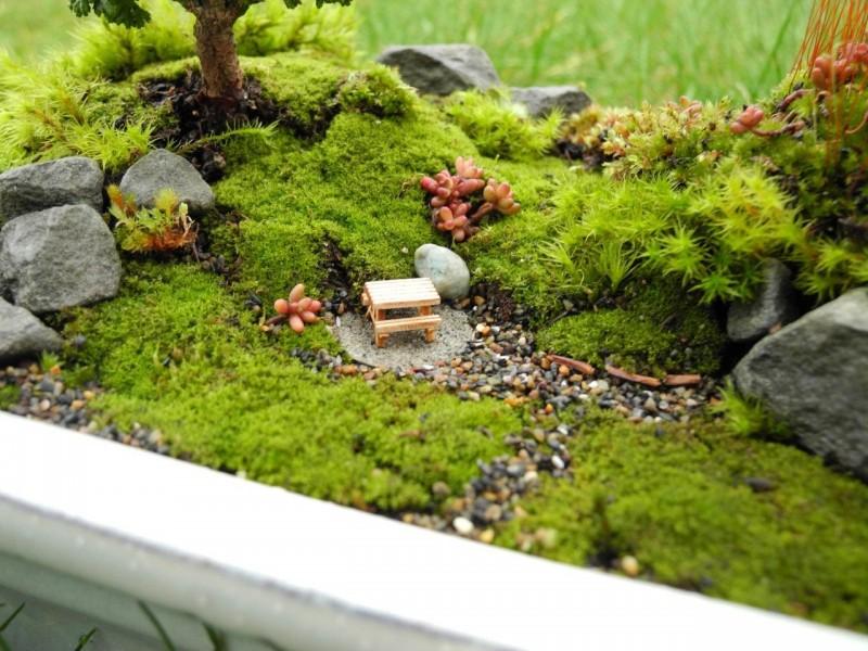 Как сделать сад из мха своими руками, мастер-класс: делаем сад из мха | houzz россия