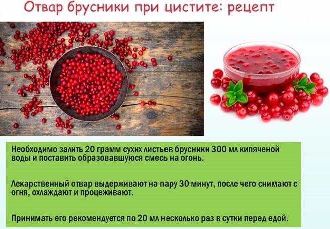 Полезные свойства брусники и самые популярные народные рецепты для здоровой кожи лица на supersadovnik.ru