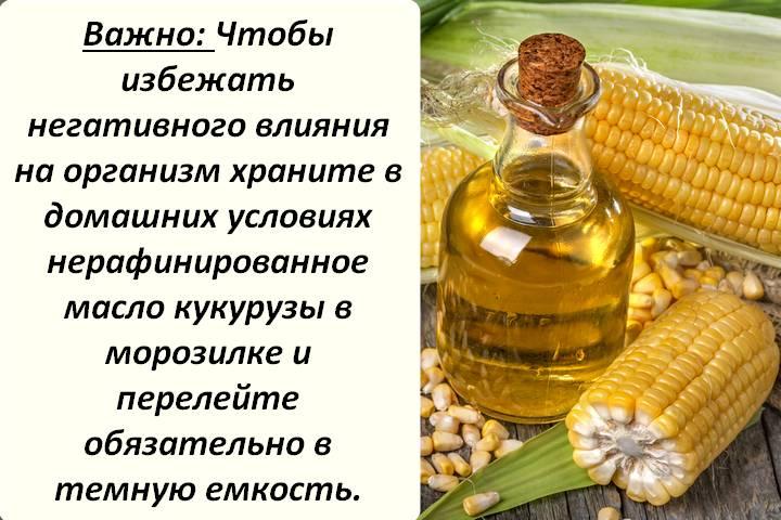 Сырая кукуруза: польза и вред для здоровья, чем полезны свежие початки, можно ли их есть