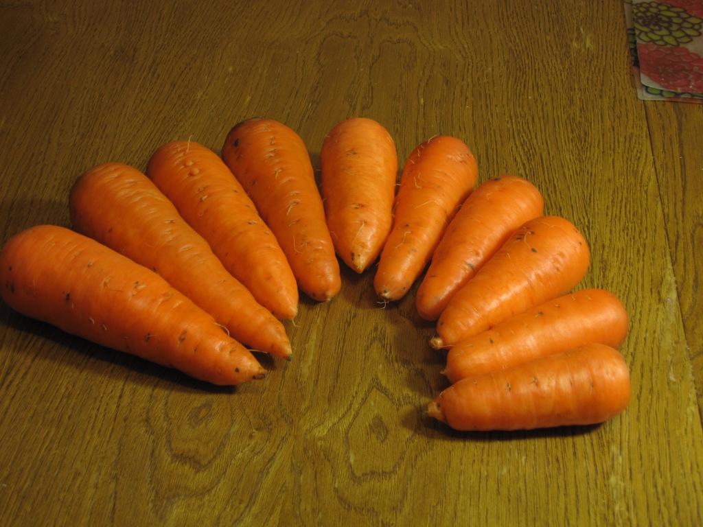Характеристика и описание сорта моркови абако, урожайность