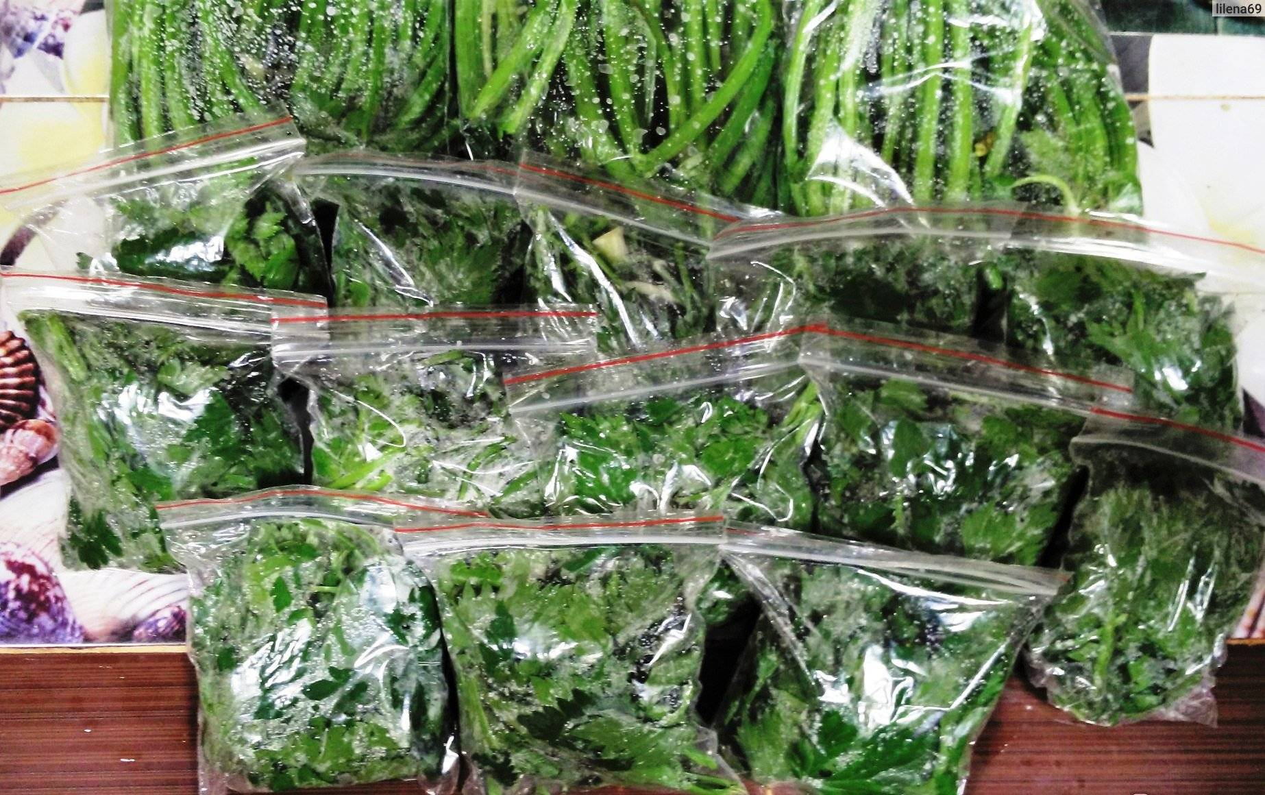 Как хранить зелень в холодильнике долго свежей — 7+ способов