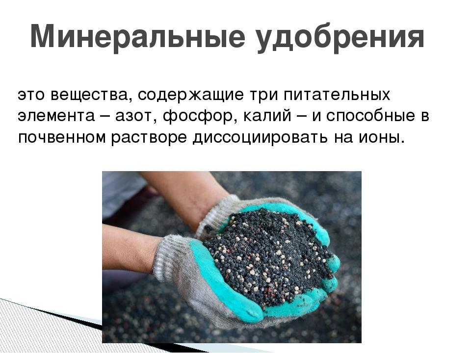 Применение фосфорно-калийных удобрений: как вносить осенью, виды, какие к ним относятся