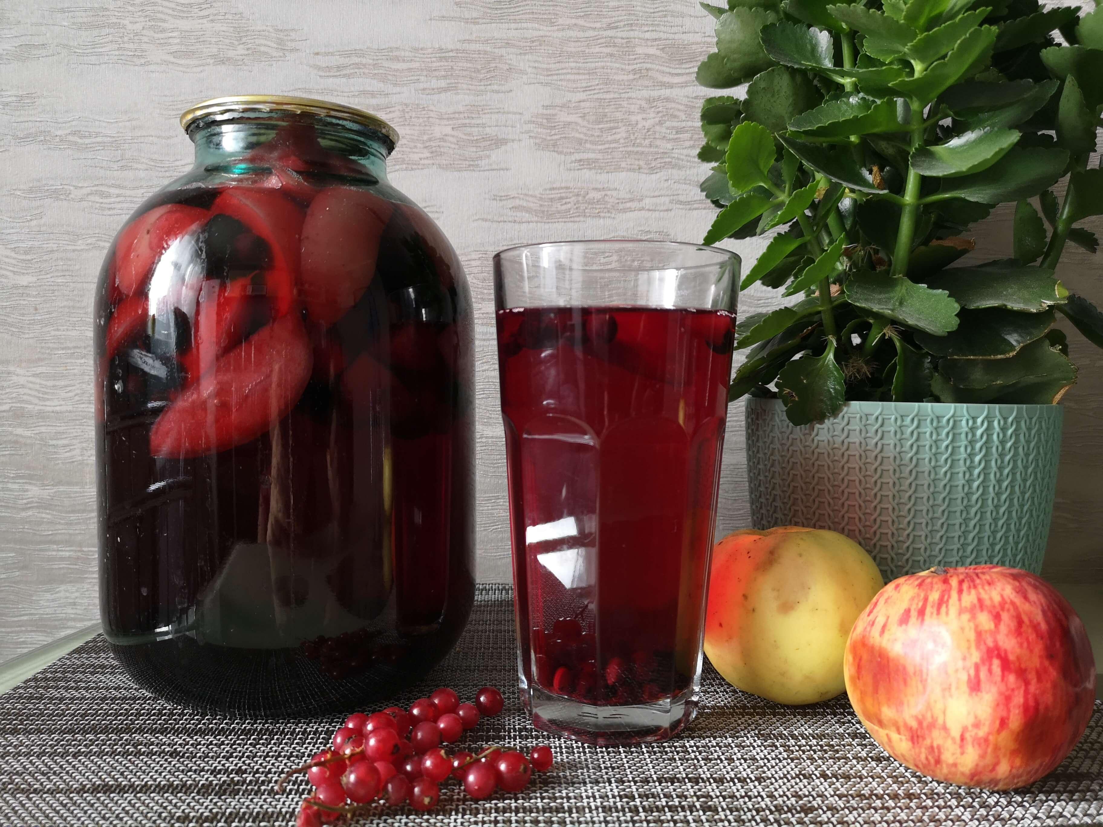 Компот из черноплодной рябины: 4 рецепта заготовок на зиму » сусеки