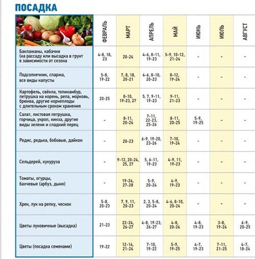 Когда сажать (сеять) помидоры на рассаду по лунному календарю в 2020 году
