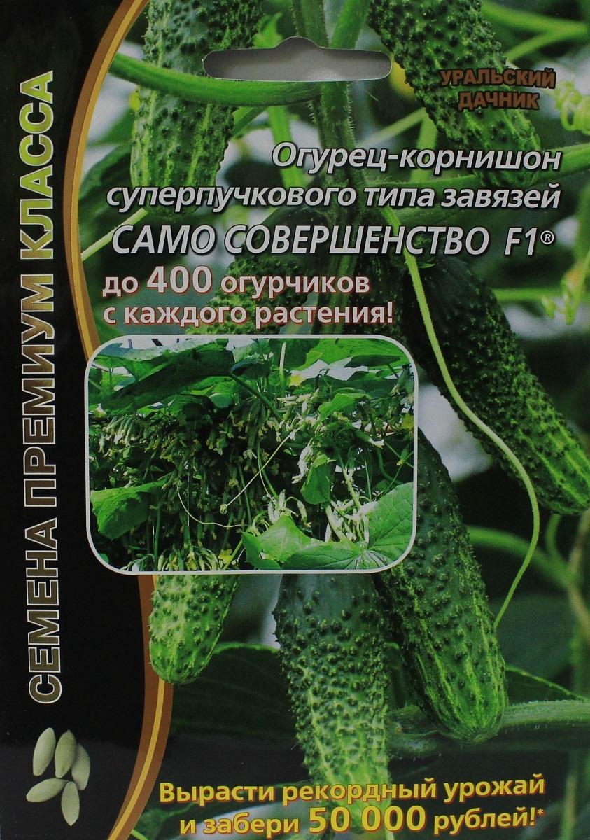 Огурец само совершенство f1: отзывы, фото, описание и характеристика сорта, урожайность гибрида, особенности выращивания, посадка и уход