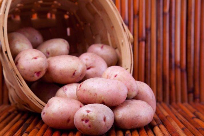 Описание и характеристики картофеля сорта Хозяюшка, правила посадки и ухода