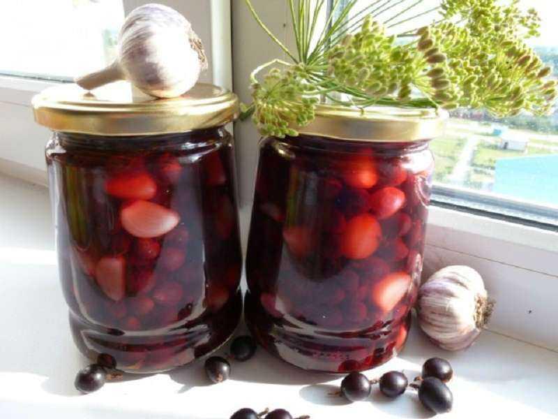 Рецепты приготовления маринованного чеснока с крыжовником на зиму: - всё про сады