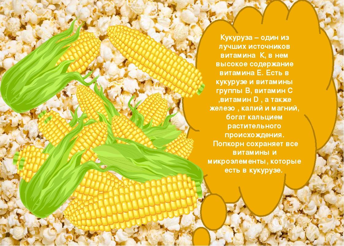 Кукуруза: польза и вред для здоровья, состав и пищевая ценность, чем полезны для организма рыльца, початки, зародыши, масло, ростки